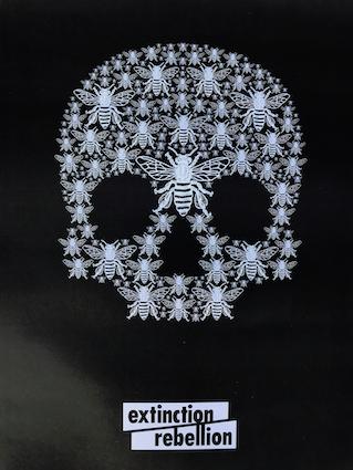 XR Skull 2.jpg