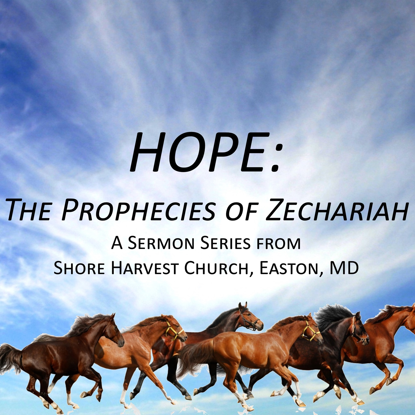 HOPE - The Prophecies of Zechariah, Podcast Cover Image.jpg
