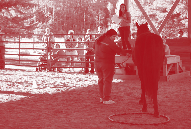 horse_red.jpg