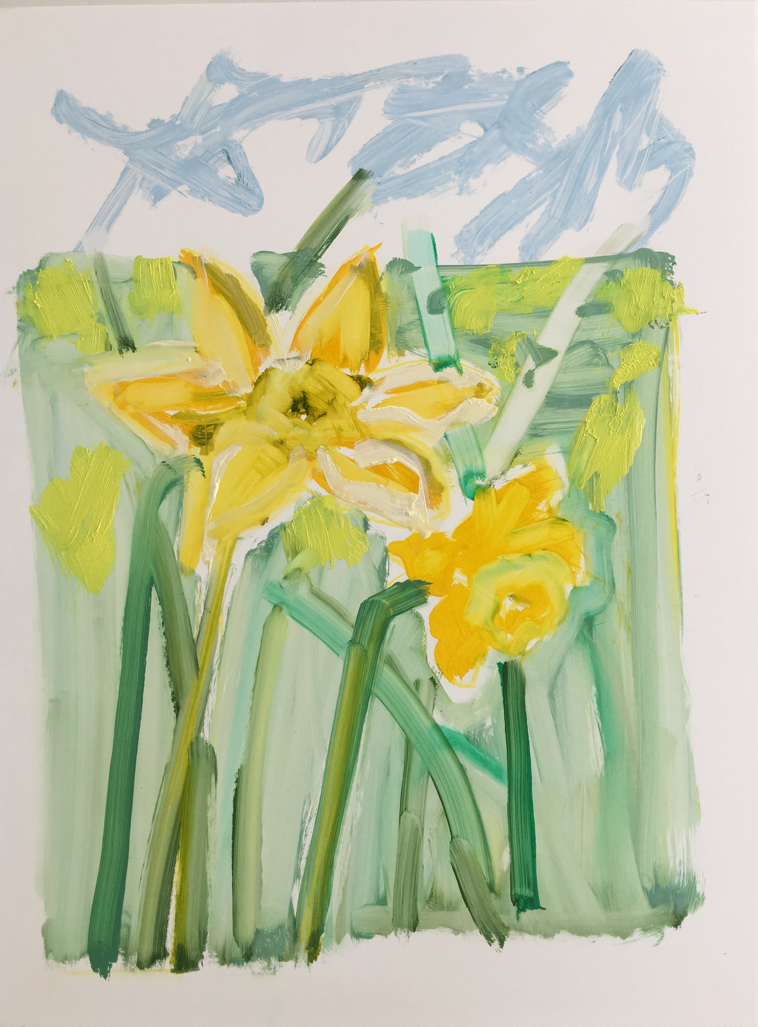 Daffodils II, 16x12