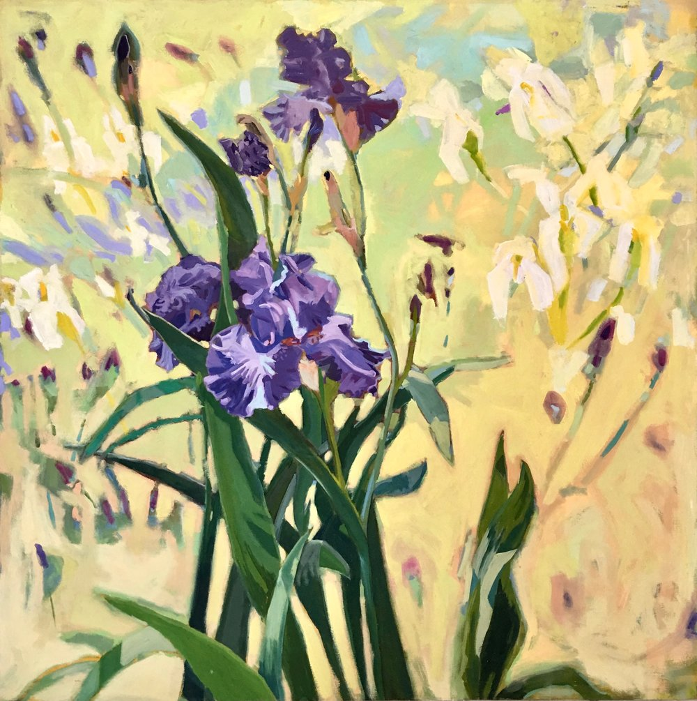 Iris, 60x60