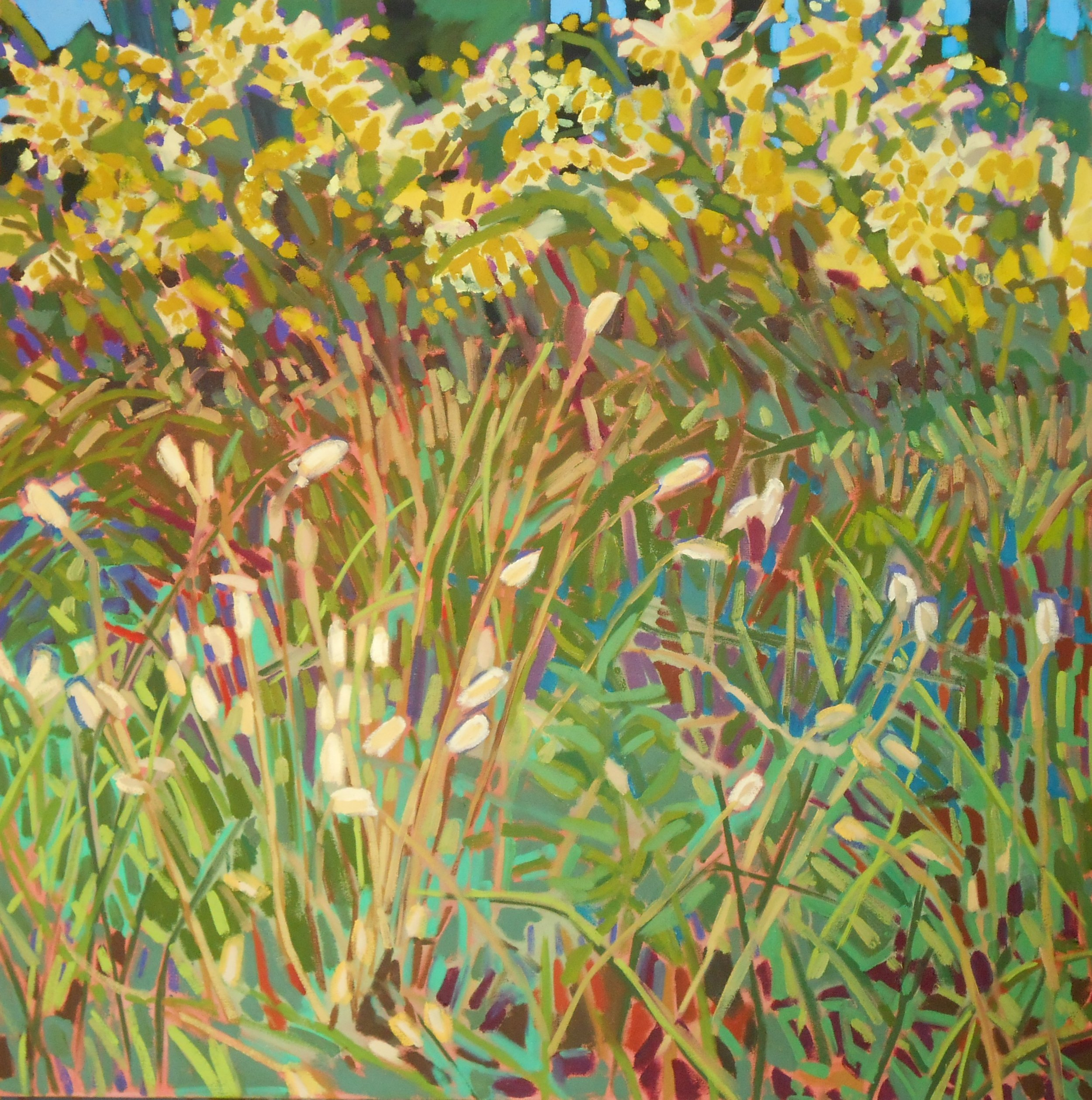 Goldenrod  Oil on Canvas  2012  36 x 36 inches.jpg
