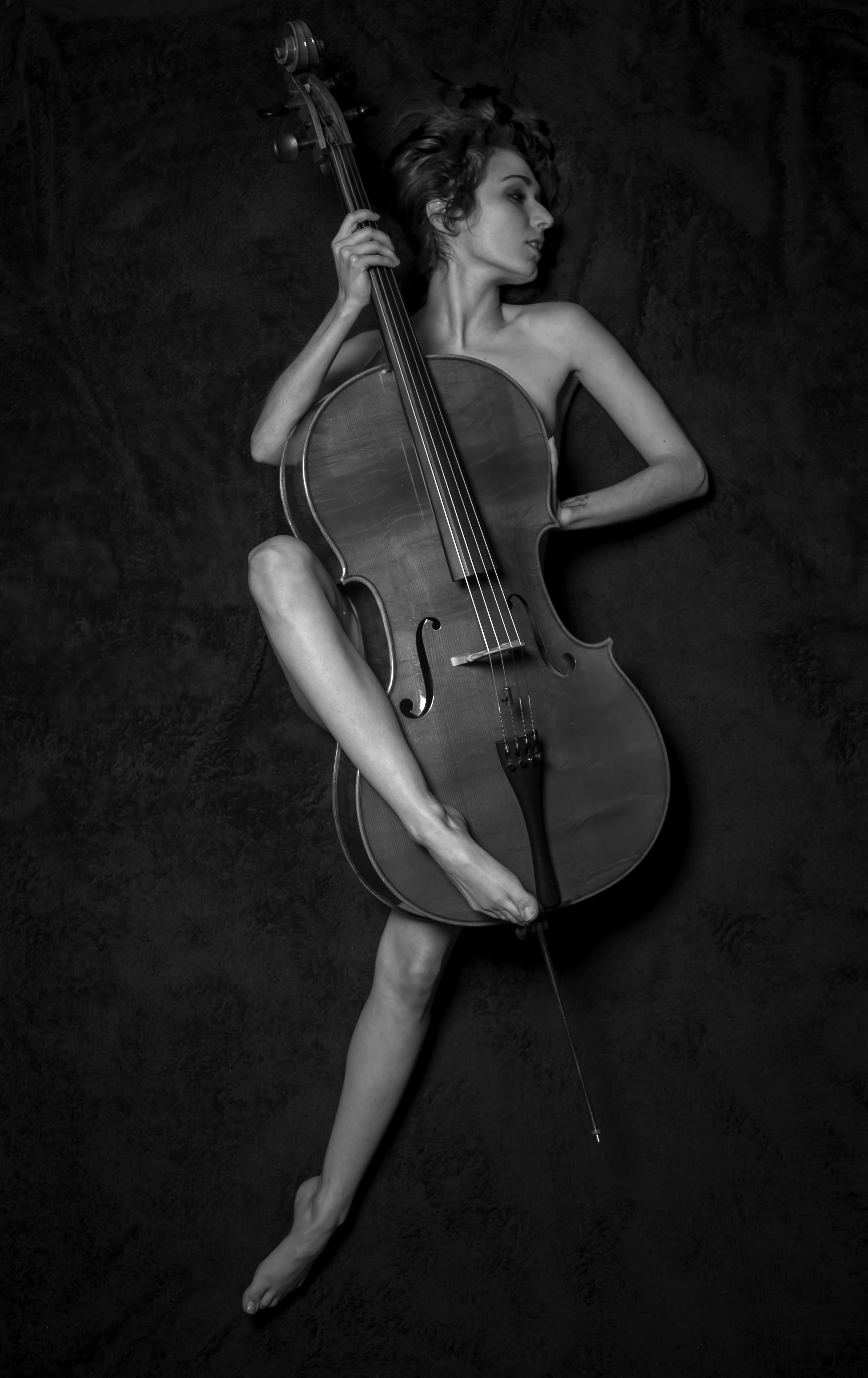 Cello  Photographer- Brian Wolfe