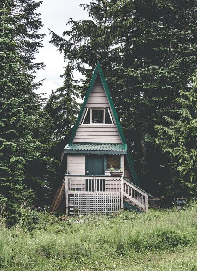 house in woods.jpg