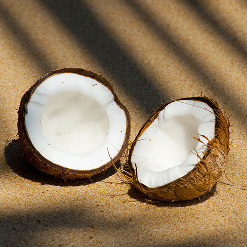 COCONUT     Cocos nucifera Fruit   Coconut acts as humectant and moisturises the skin.