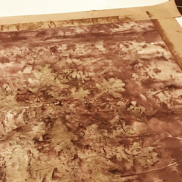 #workinprogress #botanicalalchemy #worksonpaper