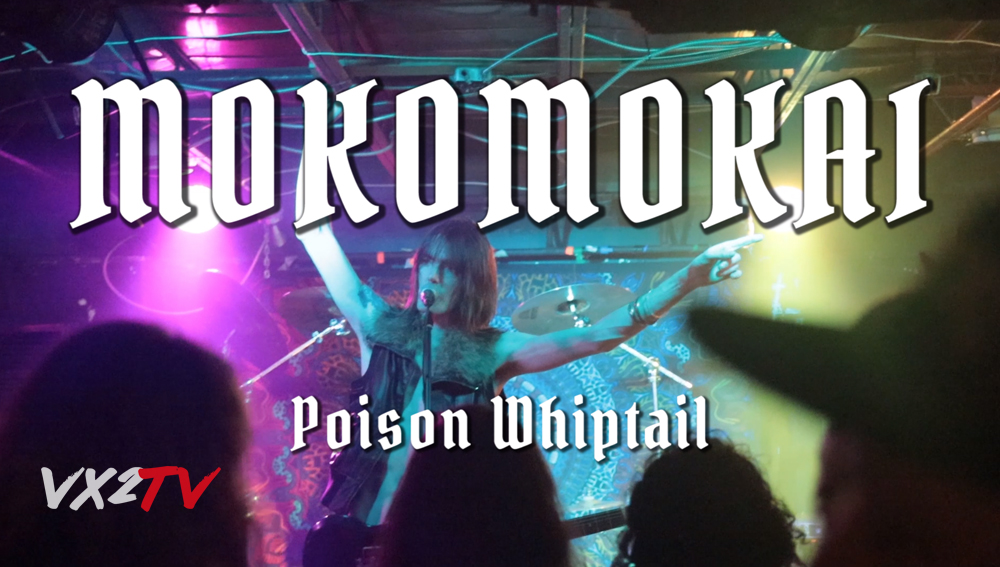 MRRL - Mokomokai poison whiptail - John Ellis Molly Rennick VX2TV.jpg