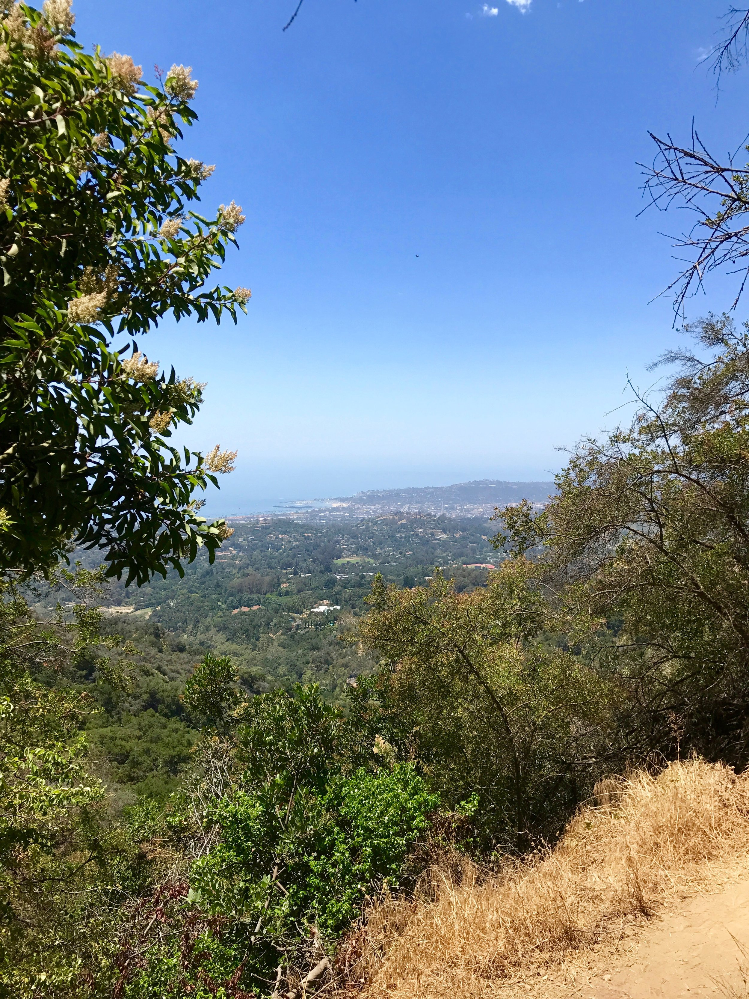 Views of Santa Barbara City from the mountains