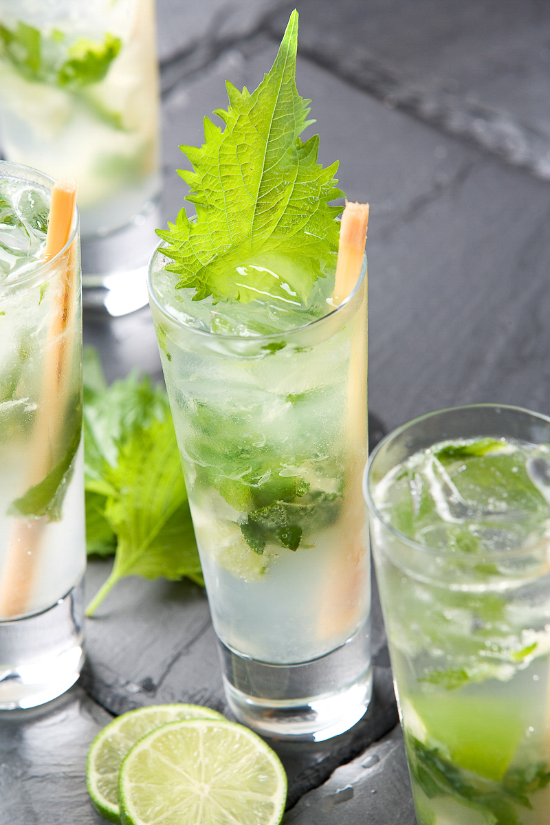 Copy of Shiso Mojito