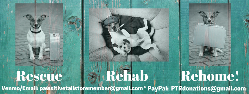Rescue * Rehab * Rehome - our hope for all of our dogs!