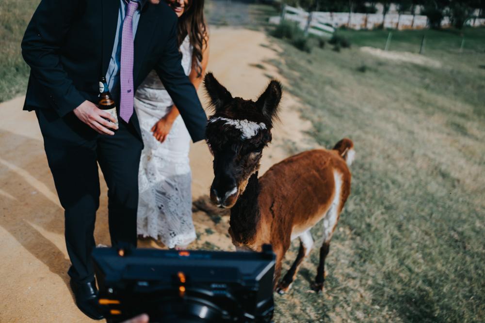 Winery-Wedding-Country-Victoria-Ebonnie+Brenton-89.jpg