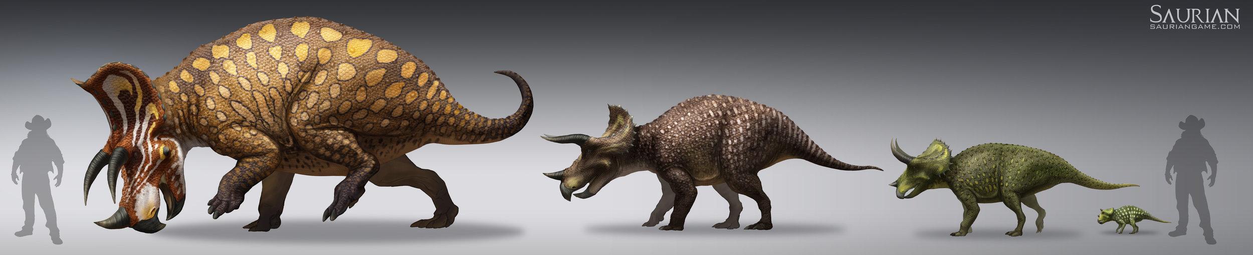 Triceratops Ontogeny