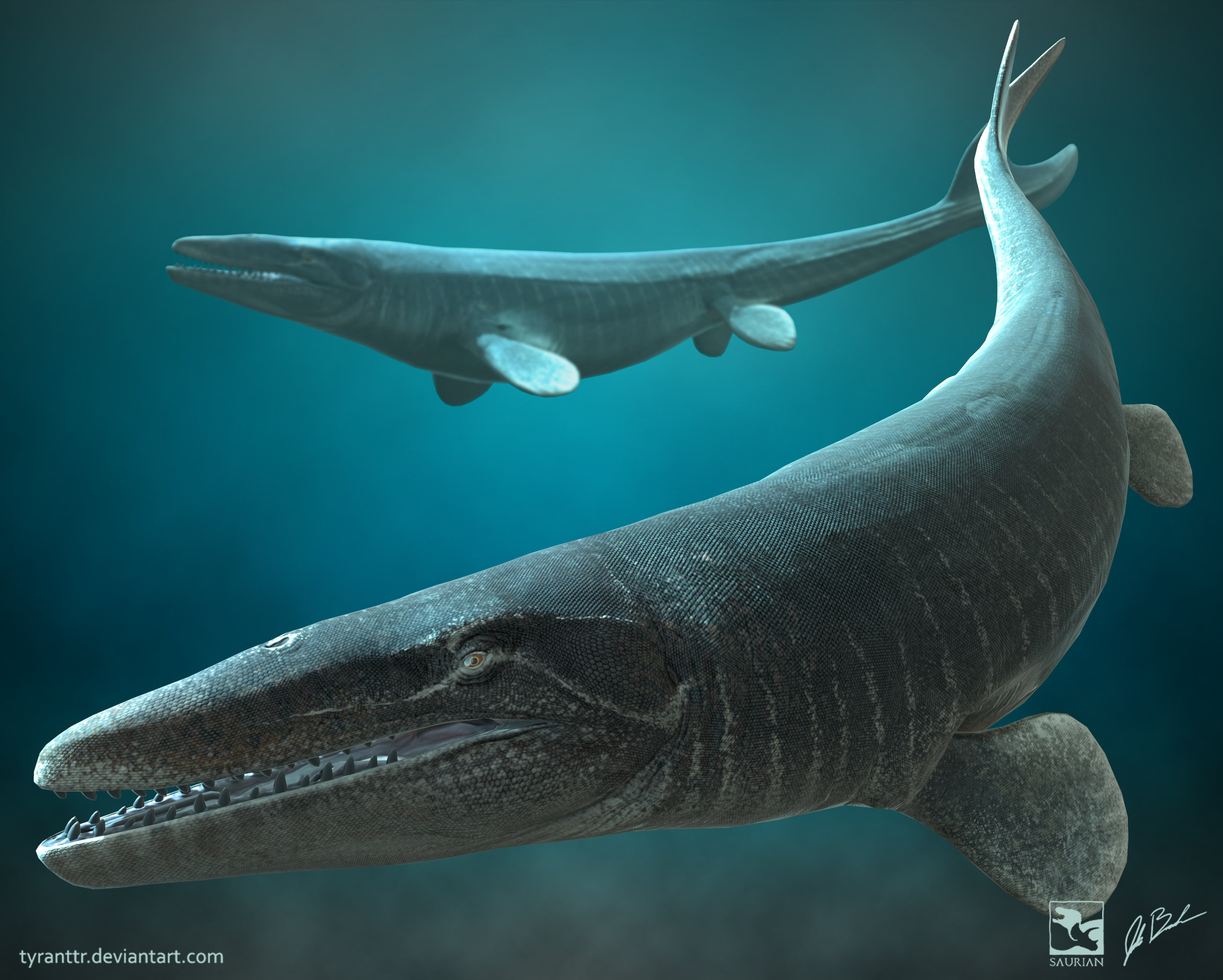 Mosasaurus.jpg