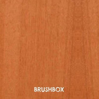 brushbox.jpg