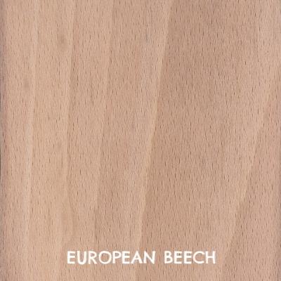 european-beech-s.jpg