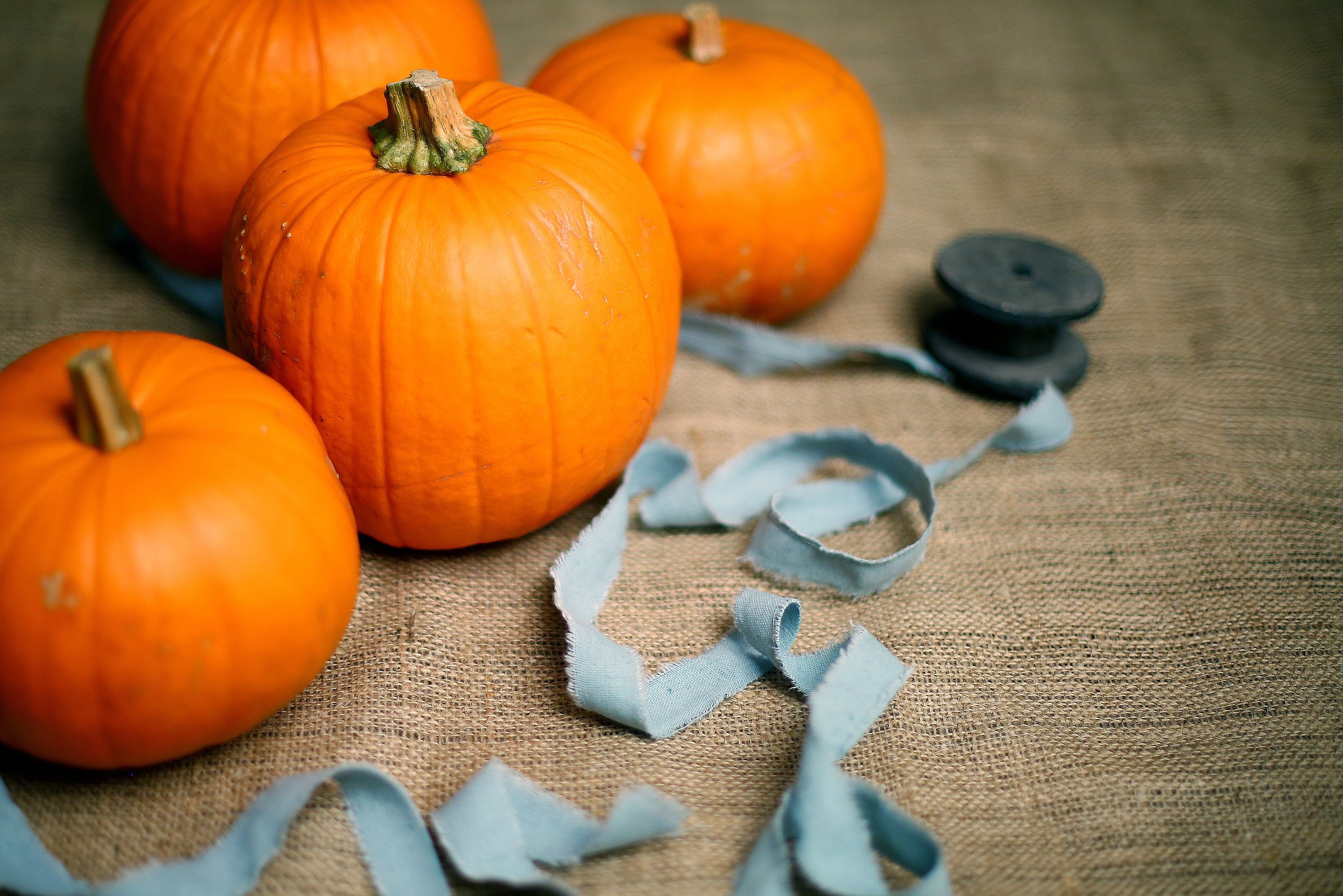 8. enjoy halloween and be careful crossing THE roads! -