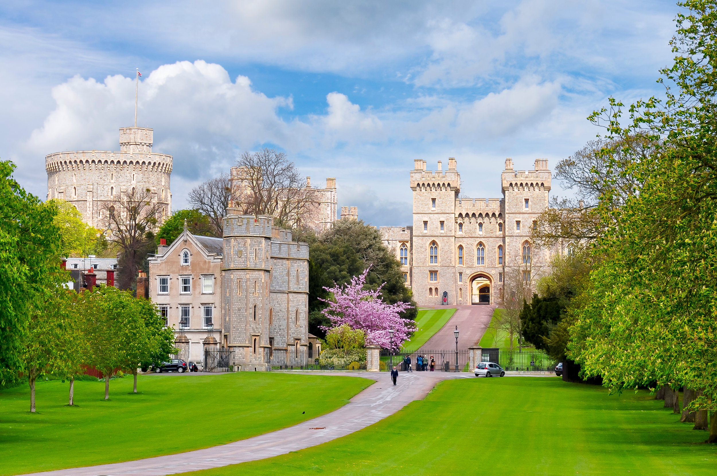 All the Windsor Castle action will be live on big screens around Mosman this weekend.
