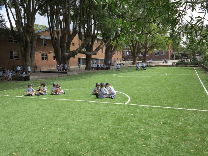 playground_feb_2013_018_3_1360195367096_l.jpg