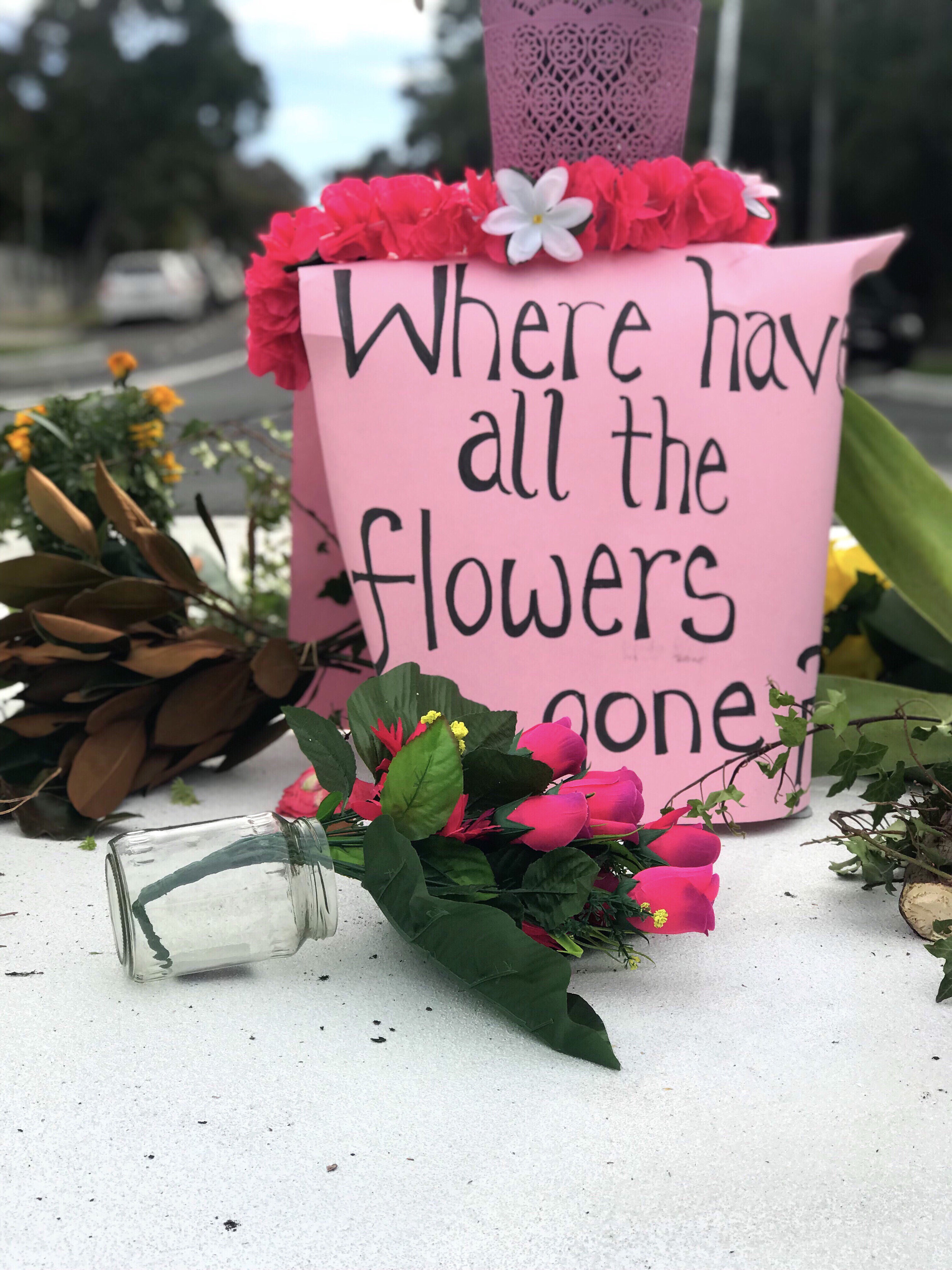 """Residents are asking North Sydney Council, """"Where have all the flowers gone?"""""""