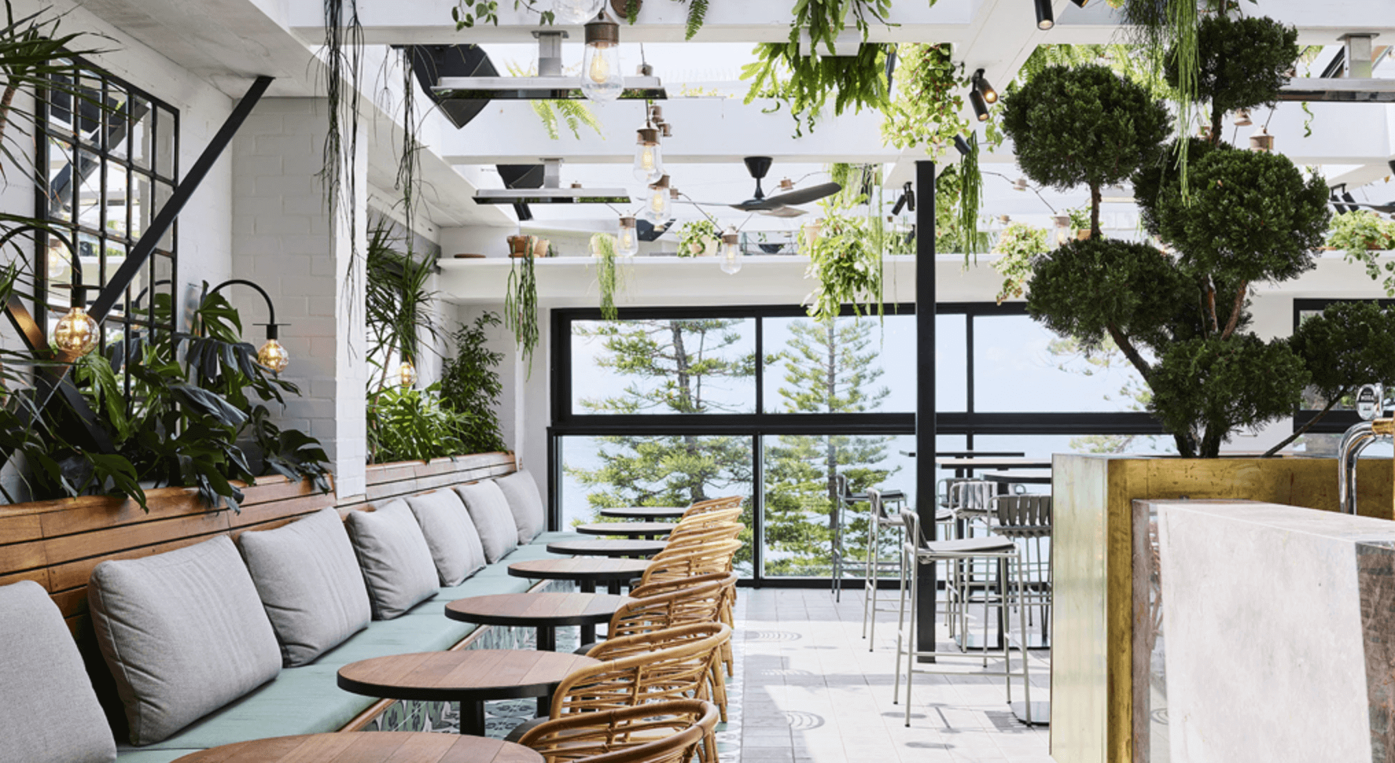 Luchetti Krelle designed the interiors for hot spot Manly Greenhouse, pictured above.