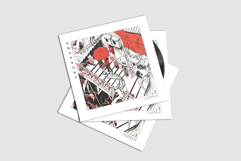Snapshot Vinyl
