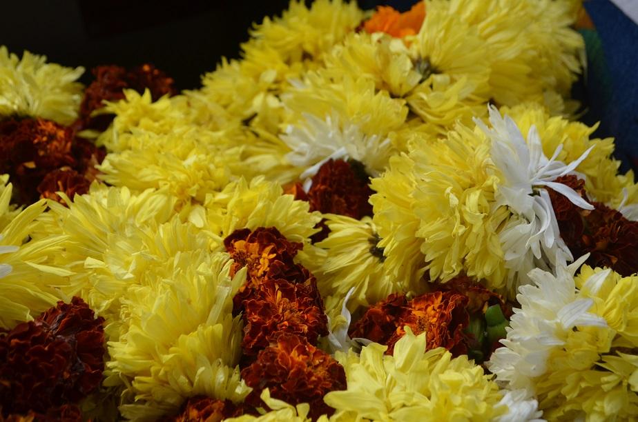 Beacon Ench India Delhi (15) web.jpg