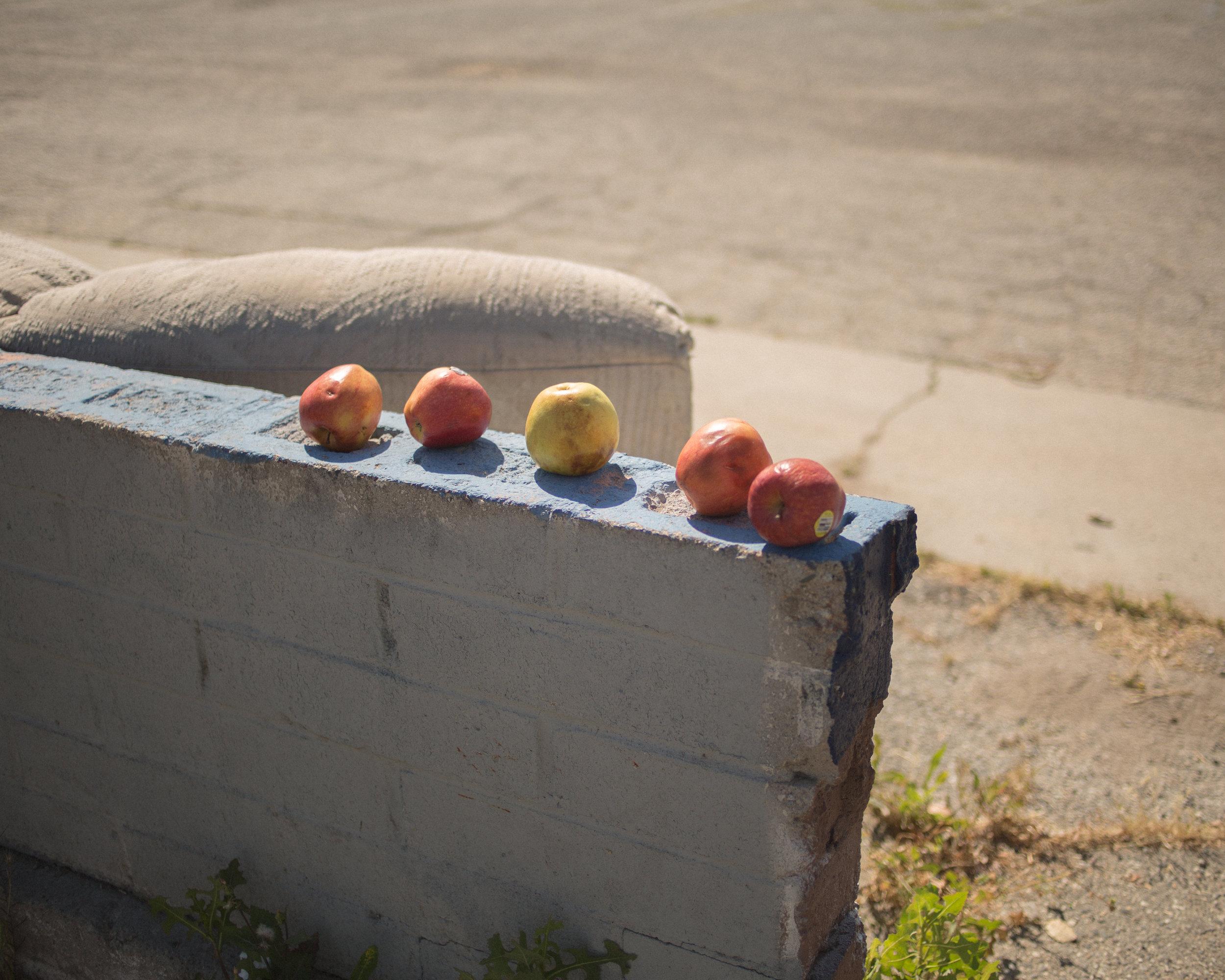 25.2_Abandoned Fruit, Riverside.jpg