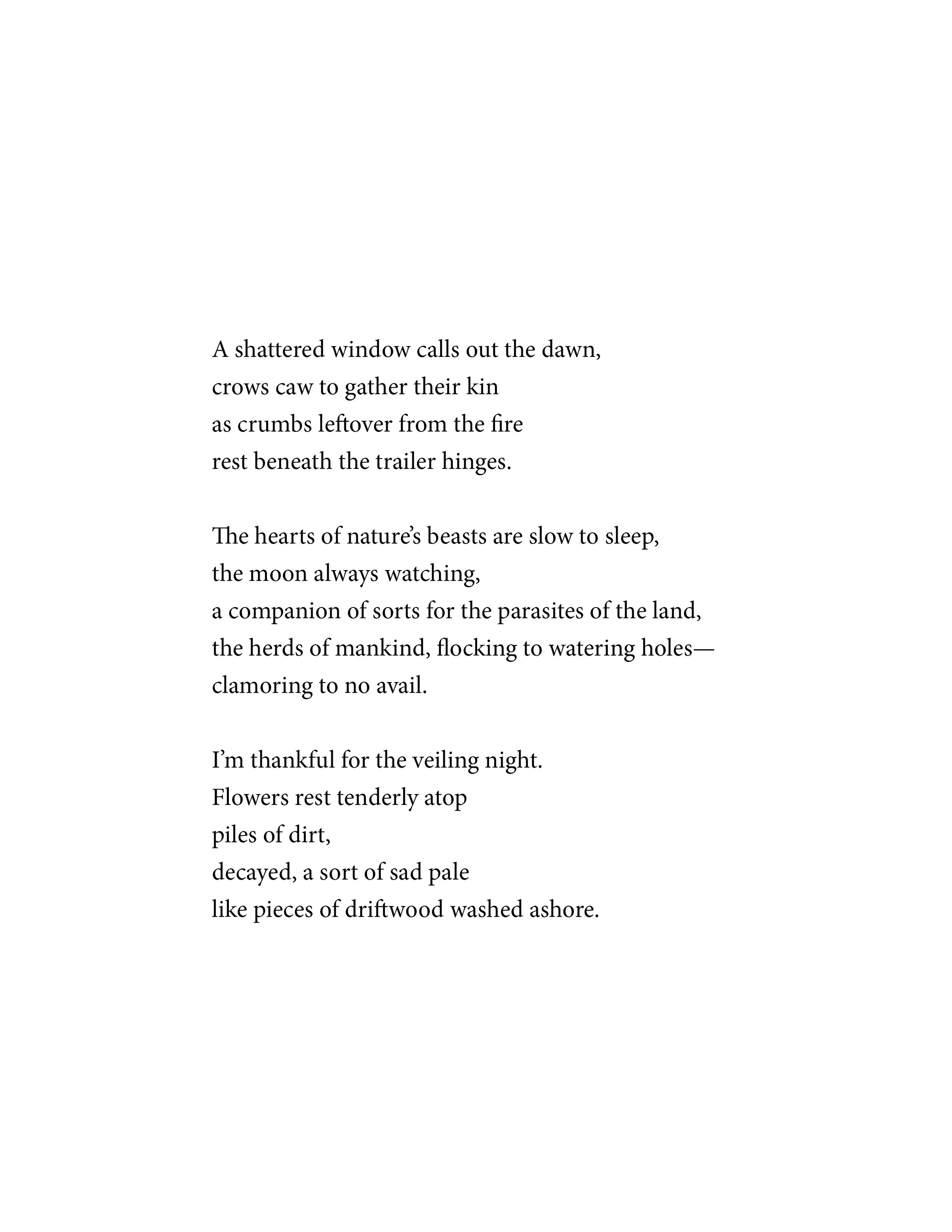driftwood_poem.jpg