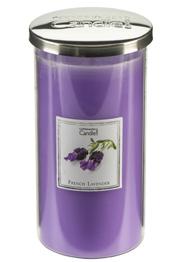 3412 French Lavender