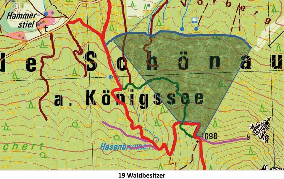 Um die Waldgebiete auf der Nord- und Westseite des Grünsteins ging es am Dienstag im Gemeinderat. Im Steilgelände werden wohl keine neuen Rückewege (lila) entstehen. Die dunkelgrüne Schraffierung macht aber deutlich, welch große Fläche mit einer Seilbahn erreicht werden könnte. Der dazu notwendige Rückeweg in Talnähe (blau) könnte gebaut werden. (Grafik: AELF)