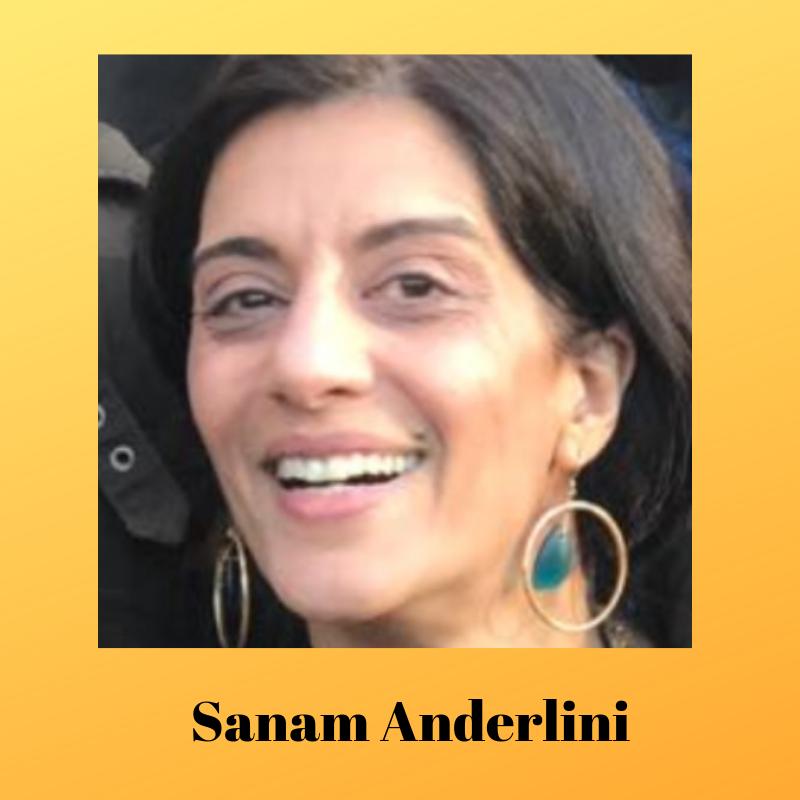 Sanam Anderlini2.png