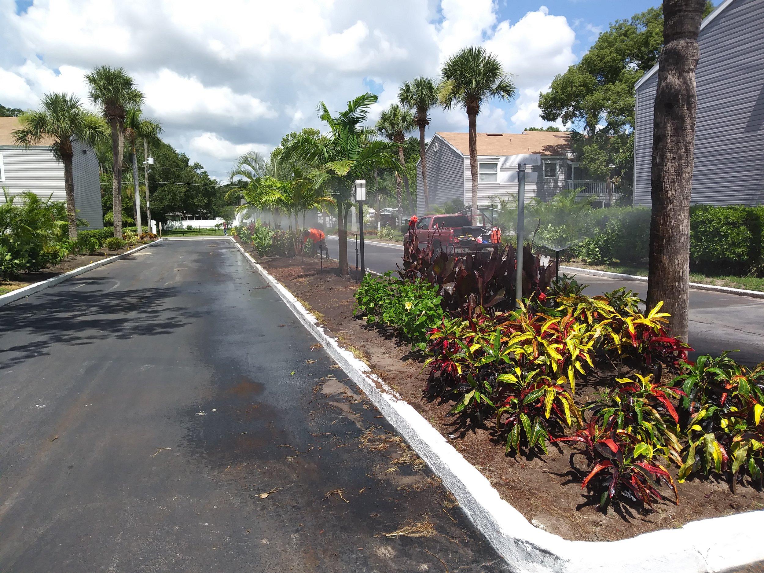 Shoreview Repair.jpg