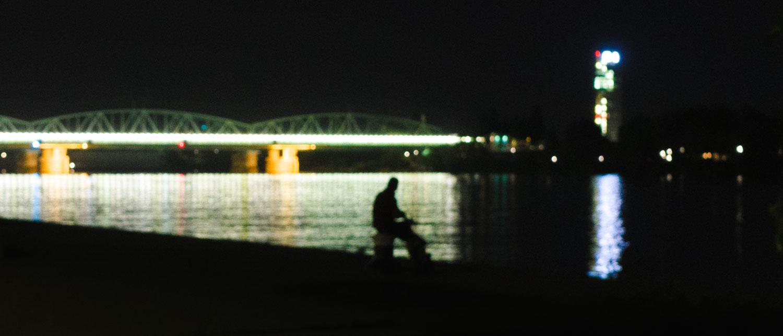 Wiener Donau