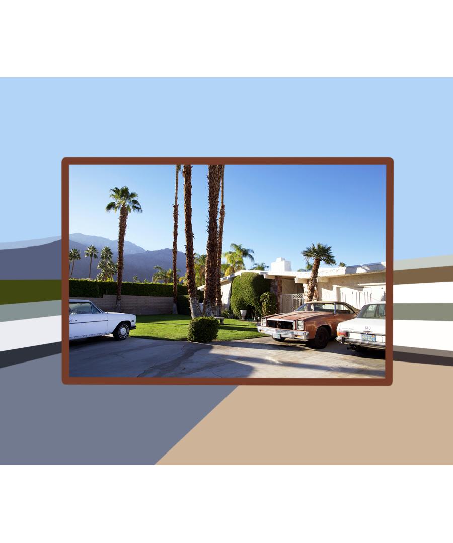 palmspringsdriveway.jpg