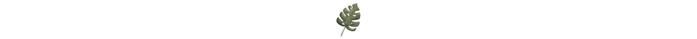 carmen_palmwebsite.png