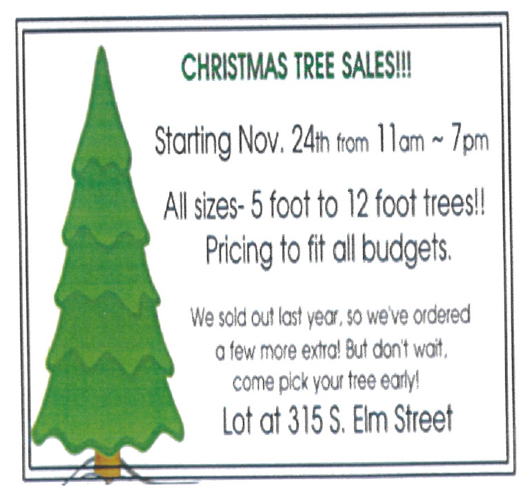 CCS Christmas Trees.jpg