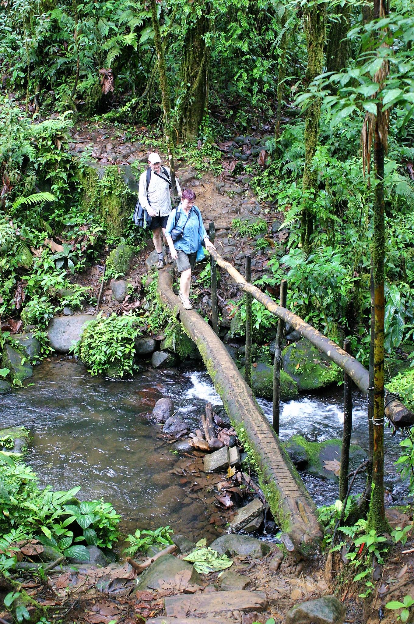 Hiking with Sentir Costa Rica