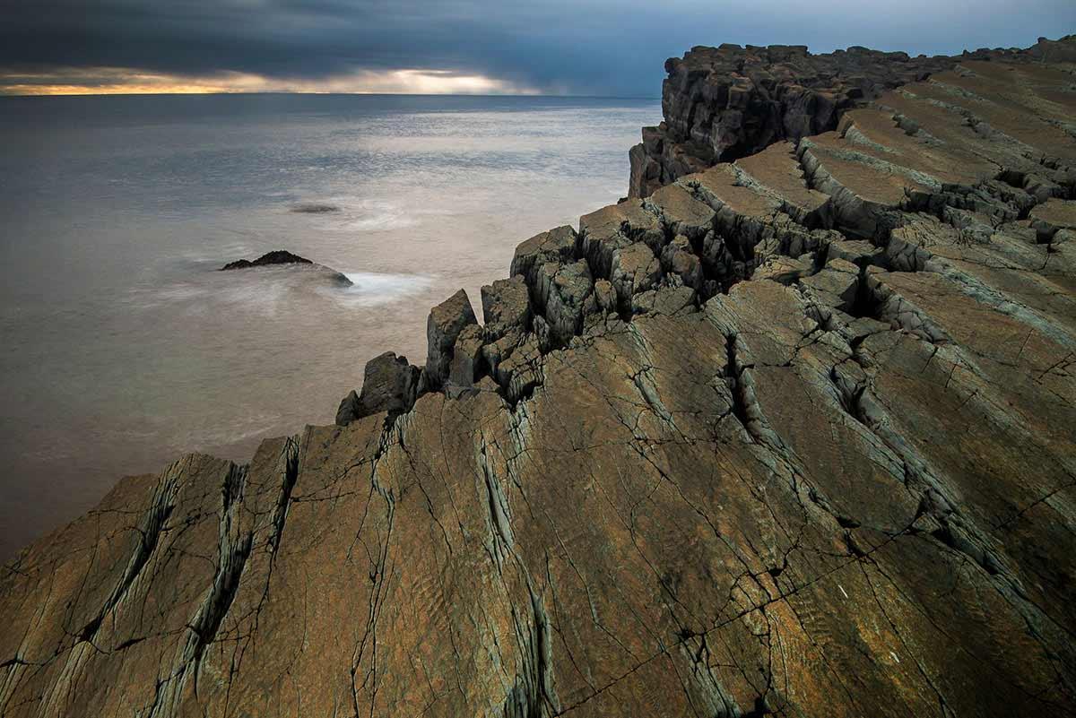 "Fractofusus misrai on main ""D"" Surface. Mistaken Point Ecological Reserve, Newfoundland. Neil Ever Osborne"
