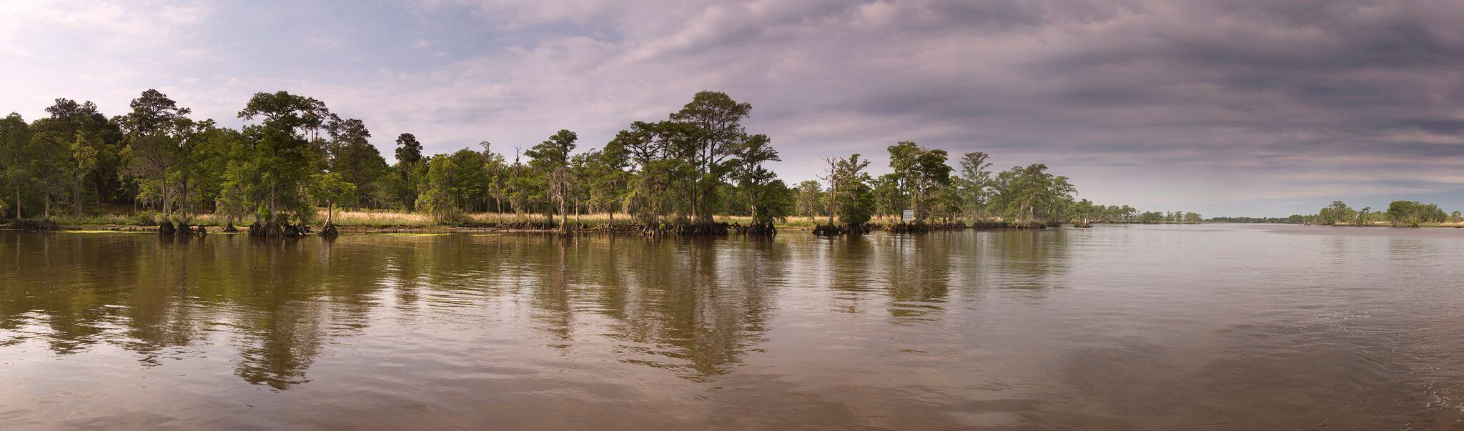 Pawleys Island #25543