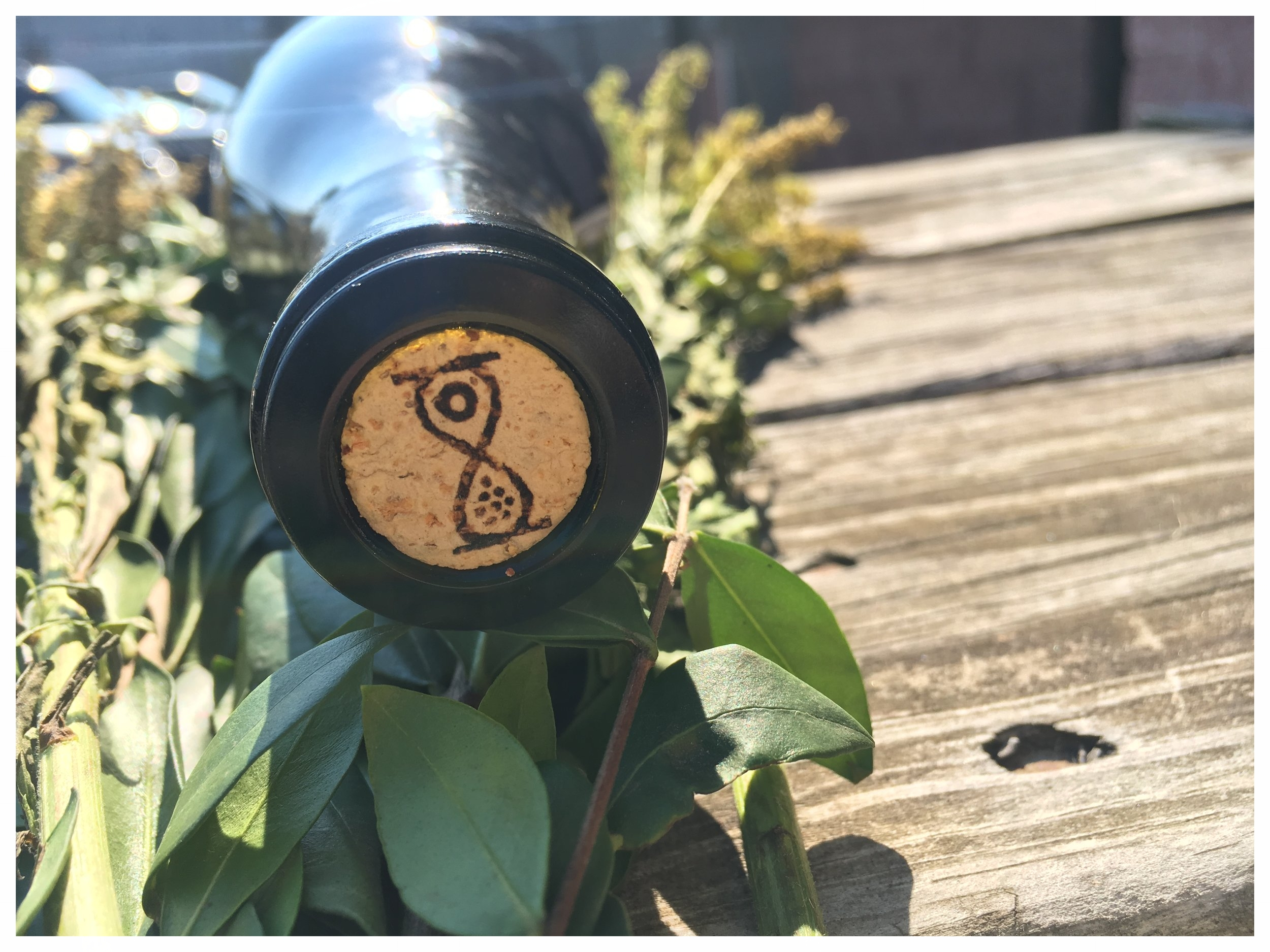 TPW Hourglass Icon 2.JPG