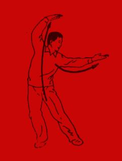 Taiji Qigong Shibashi set 2 Instructional Video - COMING SOON