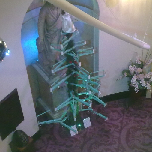 trdl xmas tree 0091.JPG