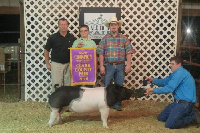 Grand Market Hog |Clark County Fair 2016