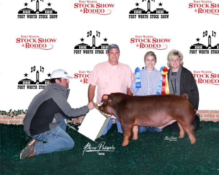 Champion Duroc Barrow |FortWorth Stock Show & Rodeo 2017