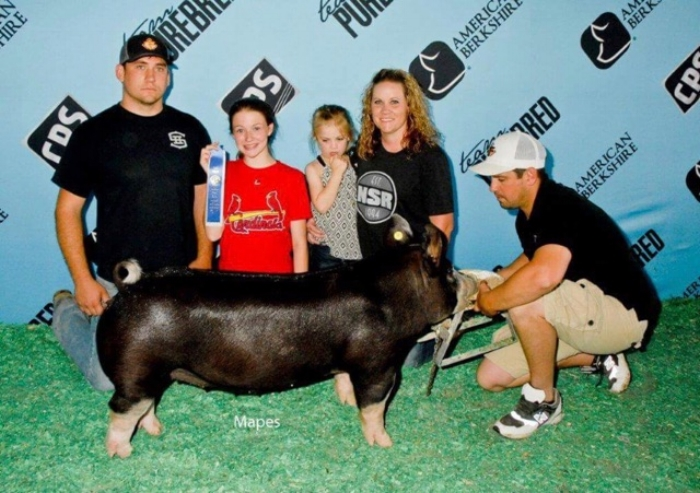 Class Winning Berk Gilt |World Pork Expo 2017