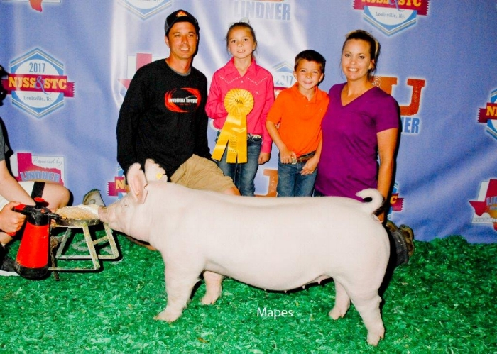 5th Overall Division 1 York Gilt |NJSS STC 2017