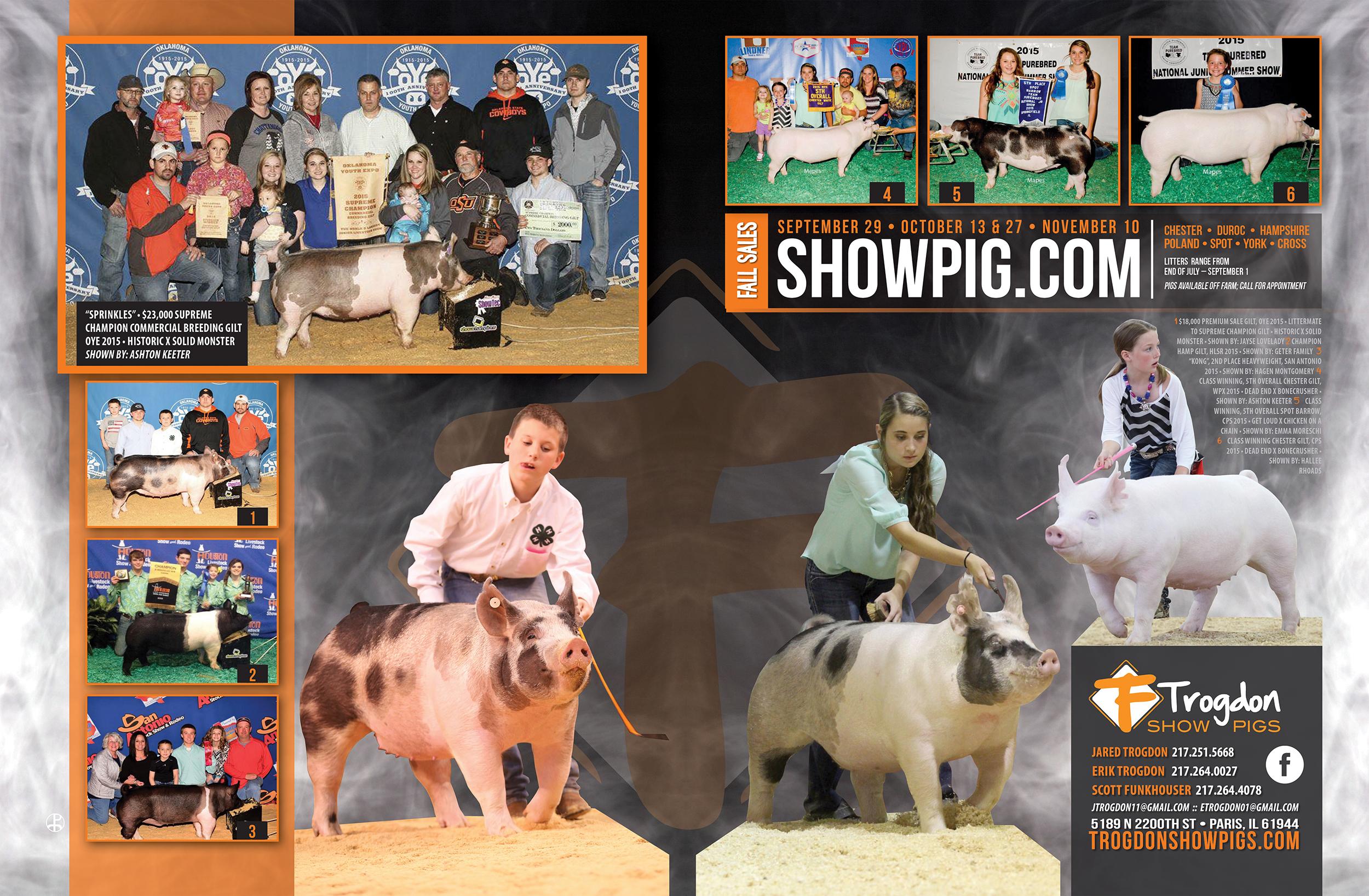 Trodgon-Show-Pigs_f15_advertisement.jpg