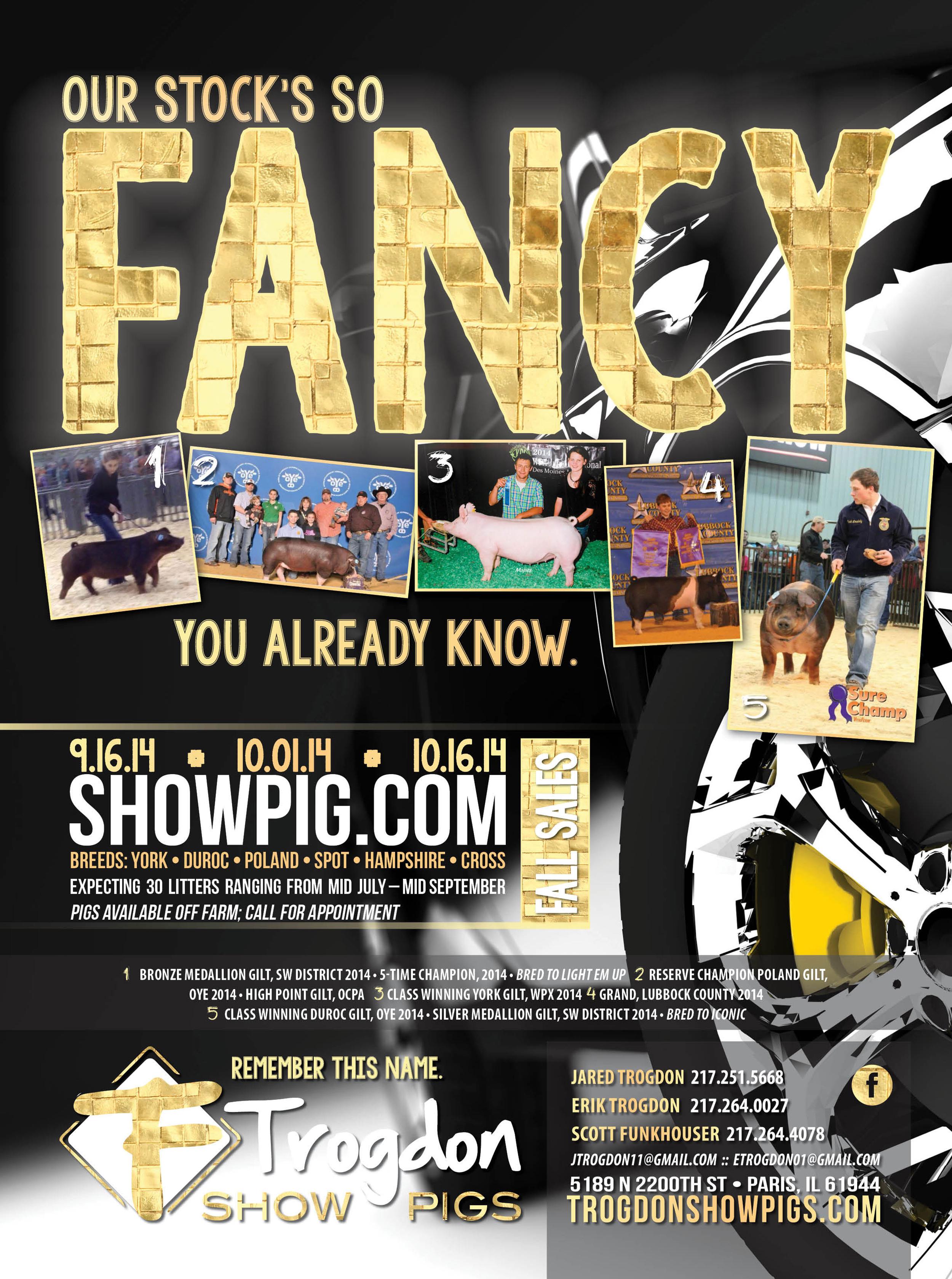 Trogdon-Show-Pigs_f14_fancy-advertisement.jpg