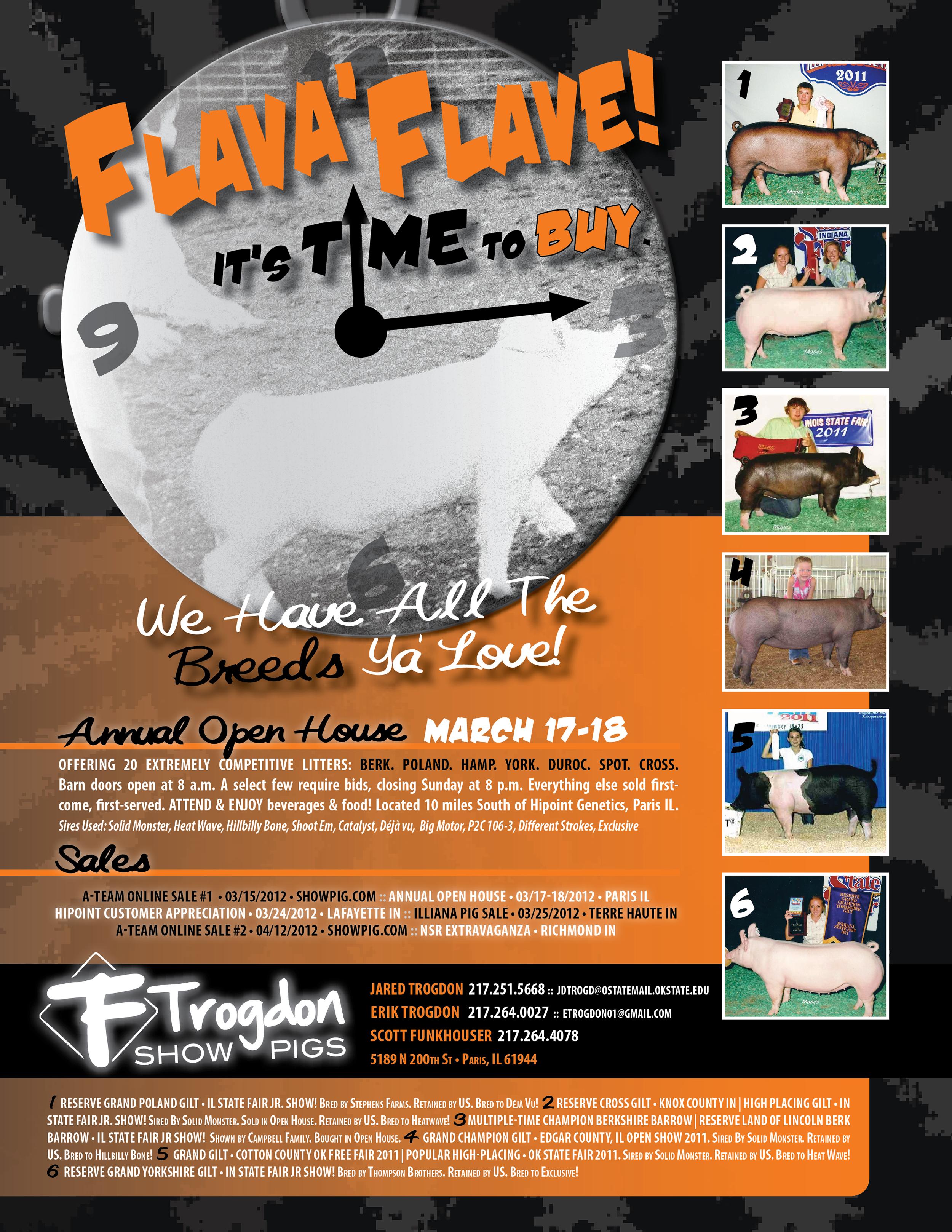 Trogdon-Show-Pigs_S12_FLAV-advertisement.jpg