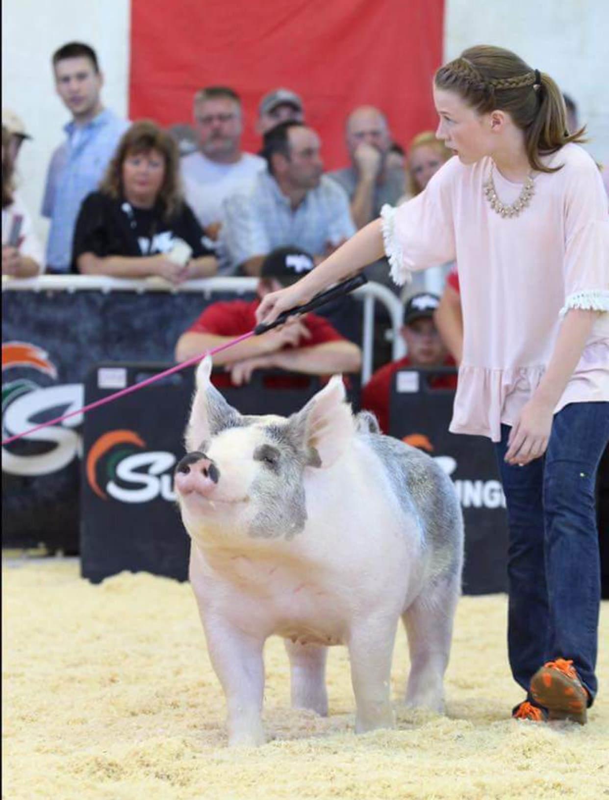 Trogdon-Show-Pigs_CupcakeR.jpg